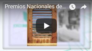 Finalista Premios Nacionales de Artesanía 2011